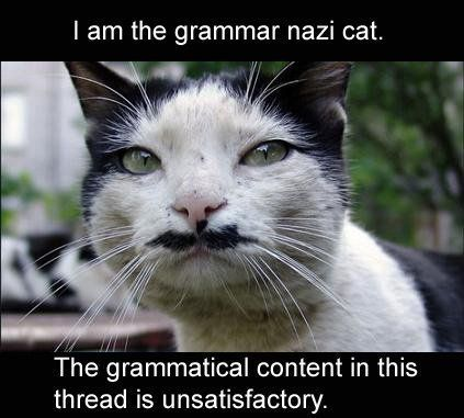 Grammer Nazi Kat